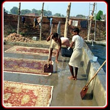 Washing of Handtufted Rugs